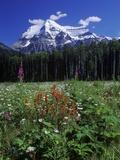 Mount Robson  3954 M  Highest Peak in Canadian Rockies  British Columbia  Canada