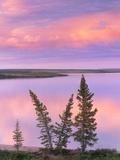 Calm Lake Reflecting Pink Clouds