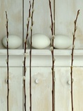Easter eggs on shelf with pussy willow twigs