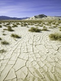 Dry and cracked mud flats in Death Valley National Park