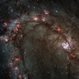 Star Birth in the Southern Pinwheel Galaxy