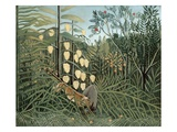 In a Tropical Forest (Struggle between Tiger and Bull)