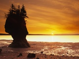 Hopewell Rocks  New Brunswick  Canada