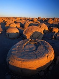 Pumpkin Patch Concretions