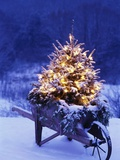 Lighted Christmas Tree in Wheelbarrow