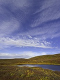 Cirrus and Cumulus Clouds Above Autumn Tundra in Denali National Park