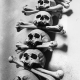 Skulls and Bones