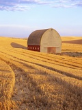 Barn in Harvested Field