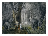 Lithograph of an Elephant Hunt After Graf Andrasy