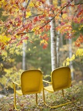 Yellow Chairs and Fall Foliage
