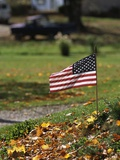 Small American Flag Posted in Yard