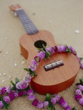 Ukelele and garland  elevated view