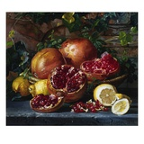 A Still Life of Pomegranates and Lemons