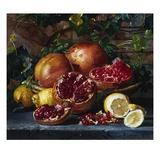 A Still Life of Pomegranates and Lemons