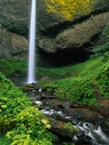 Latourell Falls in Columbia River Gorge