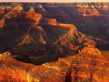 Grand Canyon Bathed in Sunlight