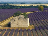 Stone Structure in Lavender Field