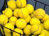 Tennis Balls in Basket