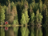 Sauna House at Edge of Forested Lake