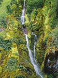 Waterfall on Moss-Covered Cliff