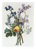 Bouquet of Rose  Narcissus and Hyacinth