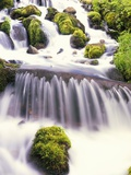 Mossy Rocks in Rushing Stream