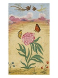 Mughal Miniature Painting Depicting a Peony with Birds of Paradise and Butterflies