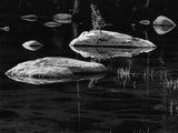 Rocks in a Shallow Lake by Brett Weston