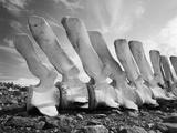 Whale Bones in Antarctica
