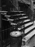 Stairway  New York  1944