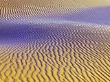 Purple Sand Dunes