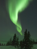 Aurora Borealis in Canada&#39;s Wapusk National Park