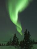 Aurora Borealis in Canada's Wapusk National Park