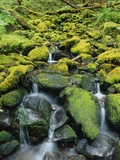 Stream Flowing Through Moss Covered Rocks