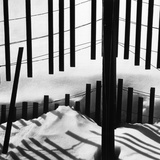Fence in Snow  1972