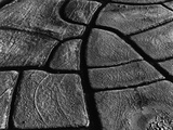 Mud Cracks by Brett Weston
