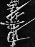 Calligraphy on Stone