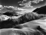 Dunes and Grasses  Oceano  1957