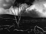 Volcano  1980