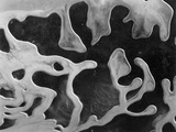 Liquid Abstraction  California  1956