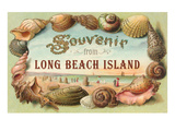 Souvenir from Long Beach Island  New Jersey