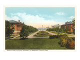 Agricultural College  University of Nebraska  Lincoln