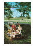 Roadside Family Picnic