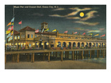 Pier and Concert Hall at Night  Ocean City  New Jersey