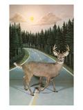 Deer in Headlights  Retro