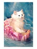 White Kitten in Basket  Retro