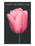 Happy Mothers Day  Pink Tulip
