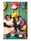 Chimpanzees in Party Mode