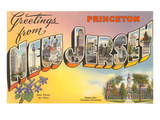 Greetings from Princeton  New Jersey