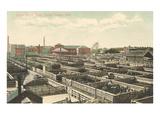 Union Stockyards  Omaha  Nebraska